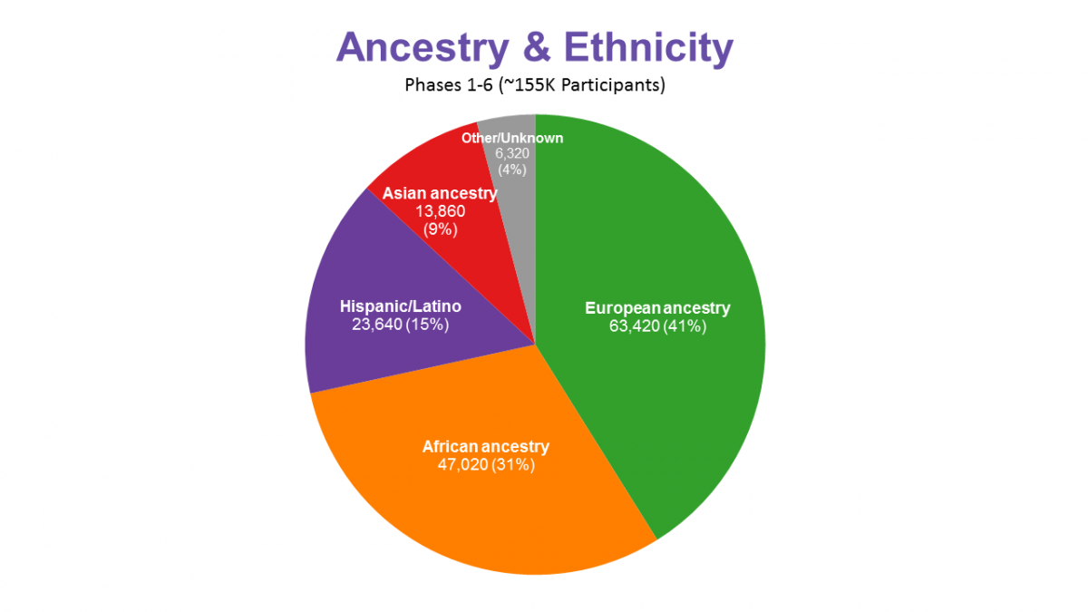 Sample numbers by ancestry/ethnicity (N=155k total)