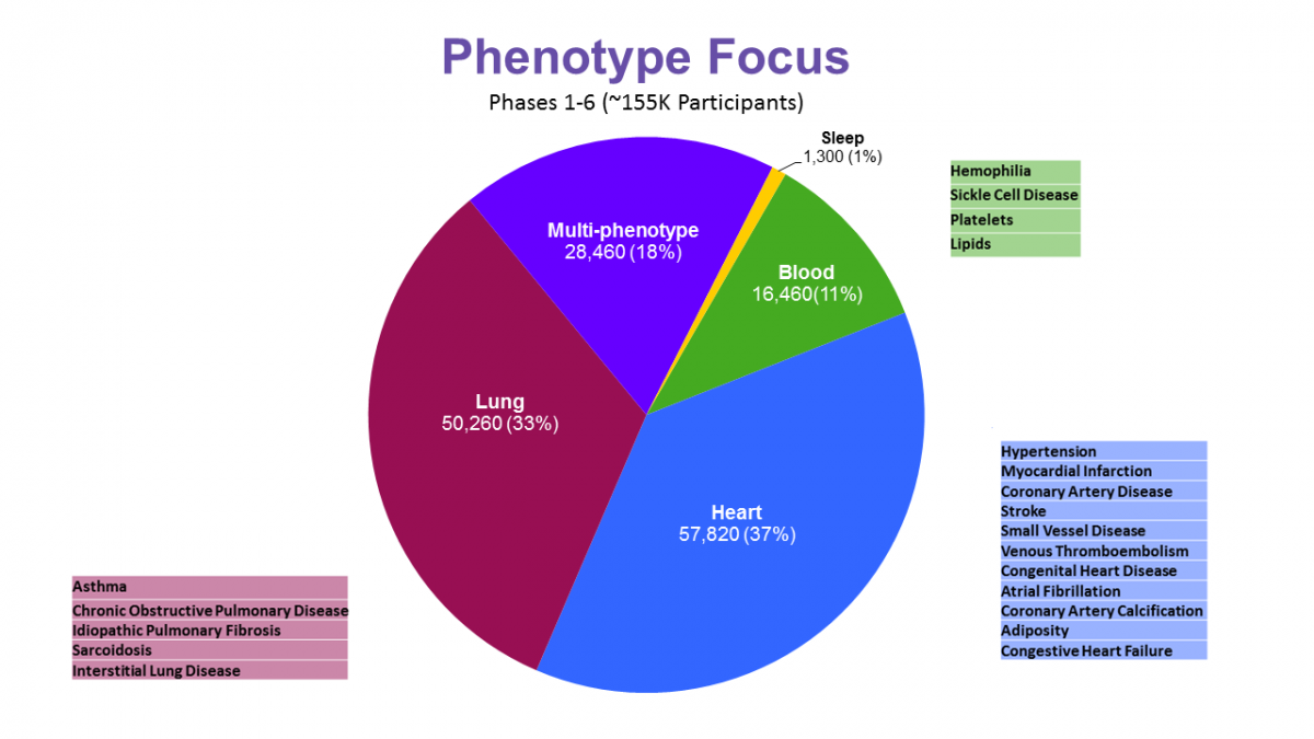 Sample numbers by phenotype area (N=155k total)